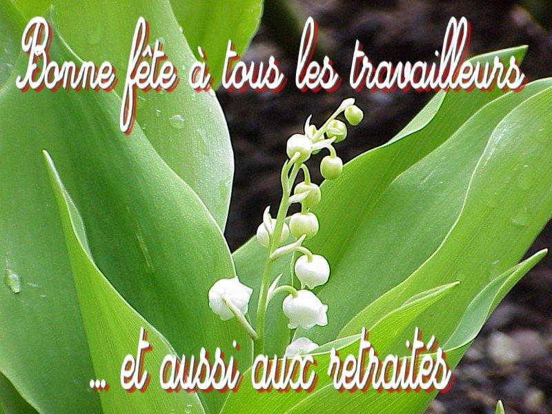 http://chti76.unblog.fr/files/2008/04/muguet.jpg